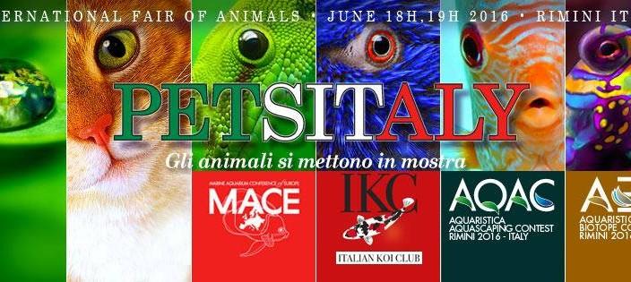 PETSITALY 2016, Rimini 18-19 giugno