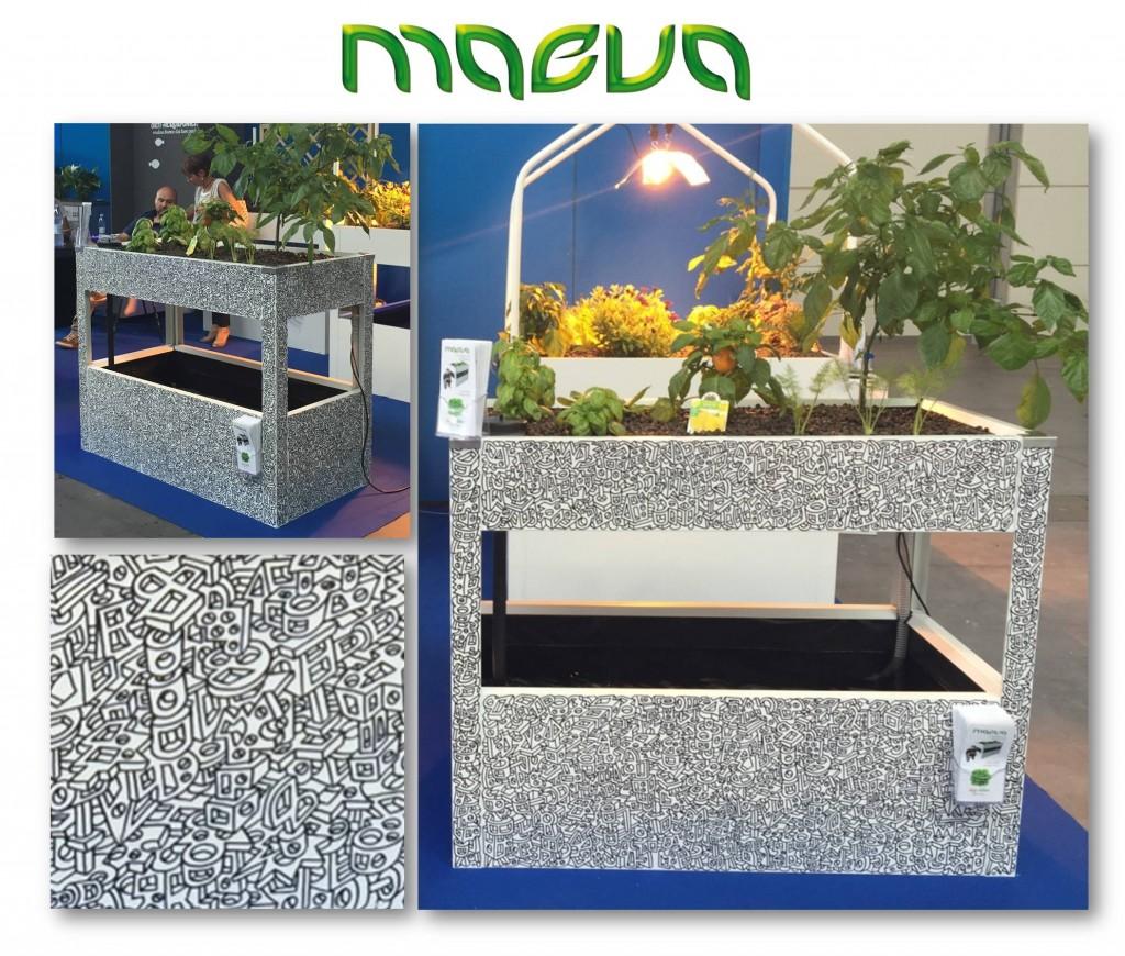 maeva s-cool